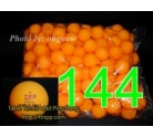 729 Friendship 1 Stars Balls x 144 (1 Gross) White / Orange